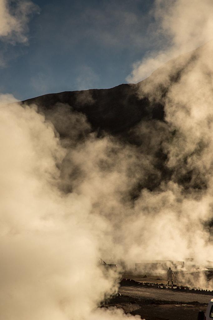 Gysire in der Atacama-Wüste